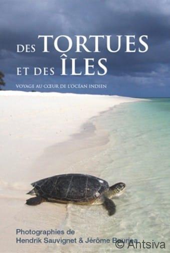 Des tortues et des iles