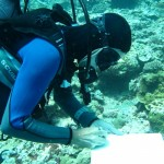 Diver in full scientific missions